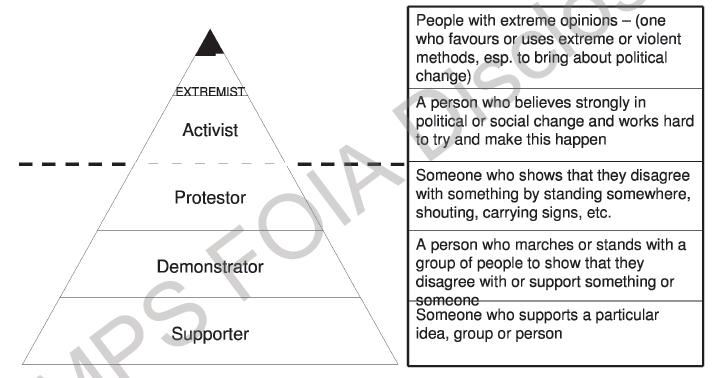 protester-triangle
